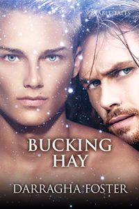 Bucking Hay - Darragha